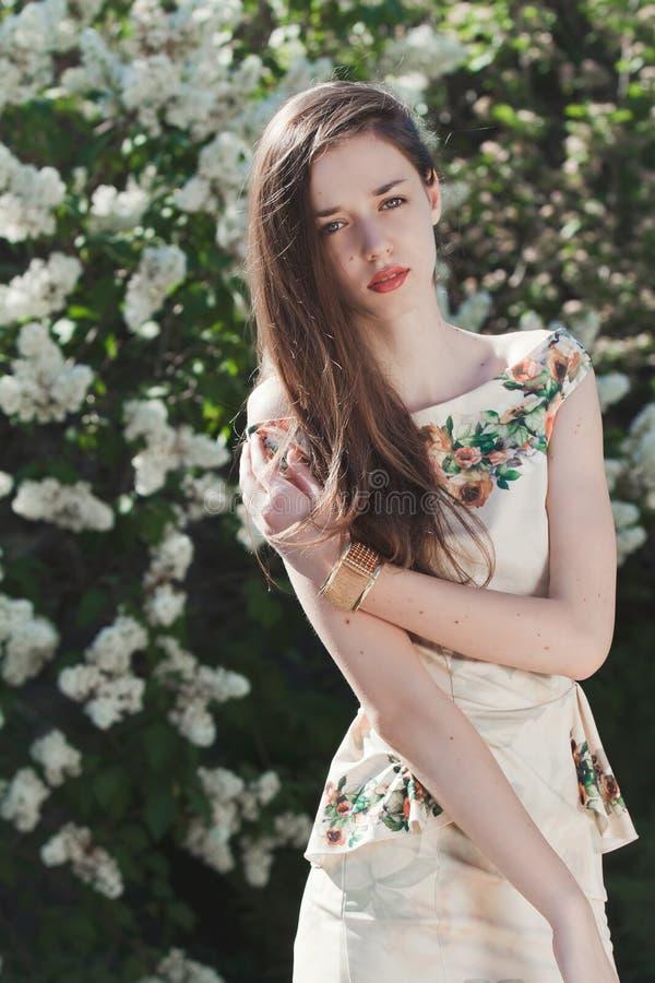 Beautiful young girl model posing near blooming lilacs at spring. Beautiful young girl model posing near white blooming lilacs at sunny spring day stock image
