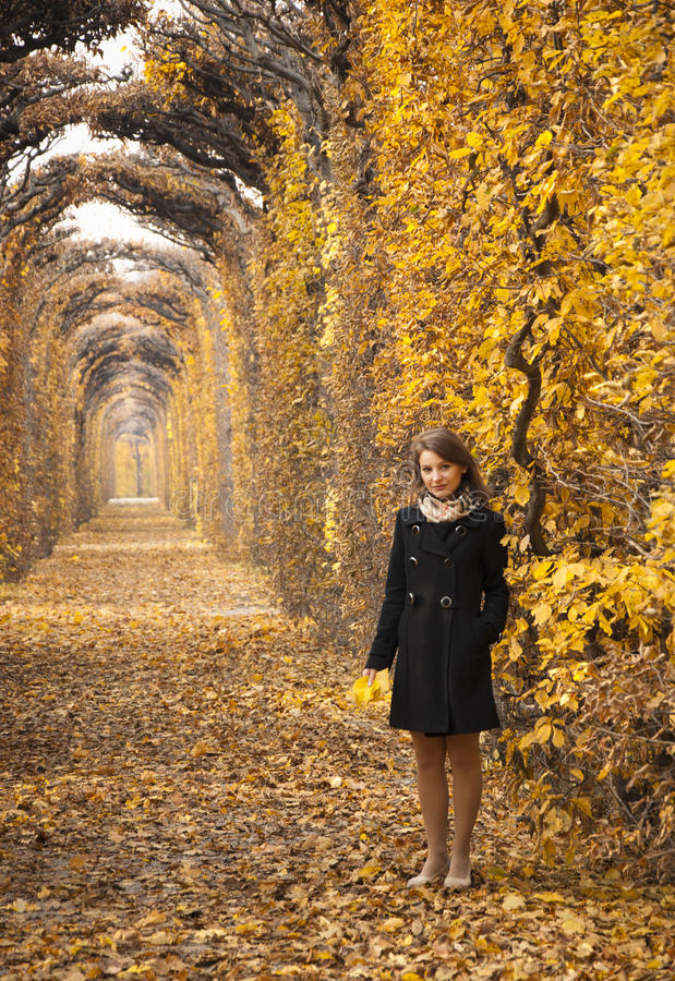 Beautiful young girl in a mysterious autumn park royalty free stock photos