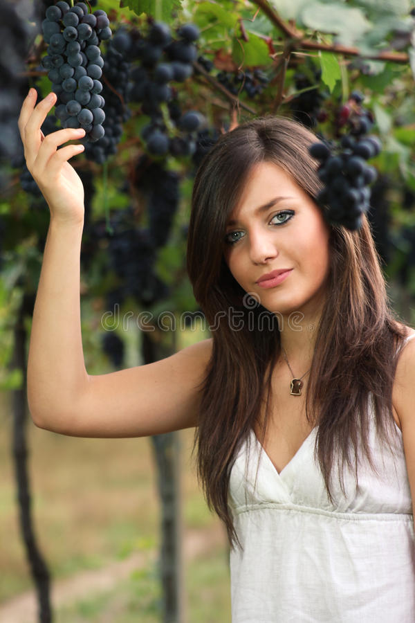 Beautiful Young Girl Picking Grapes Stock Image