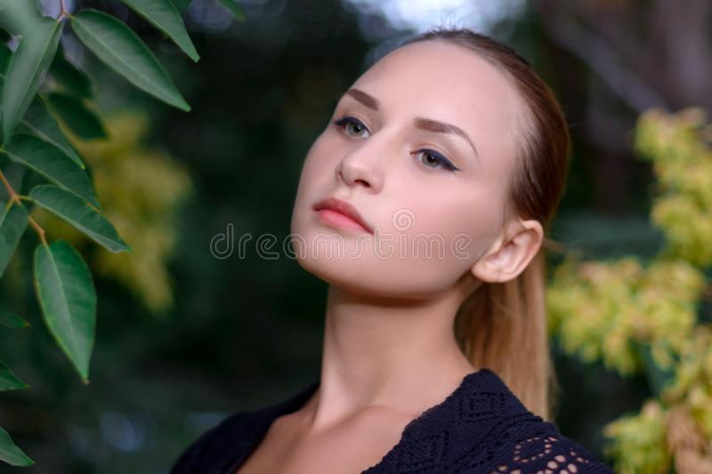 Beautiful girl in the Park royalty free stock photos