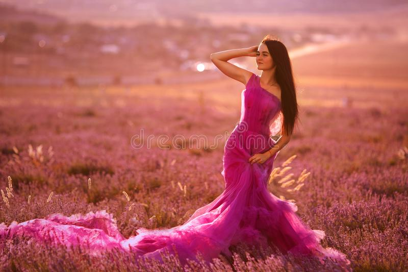 Beautiful young girl walks in a field of lavender stock photo