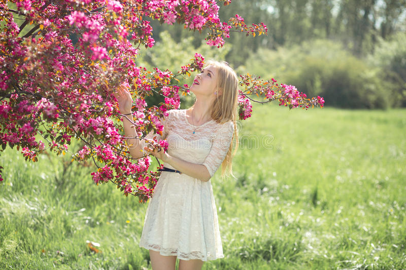 Beautiful young girl in white dress enjoying warm day in park during cherry blossom season on a nice spring.  royalty free stock image