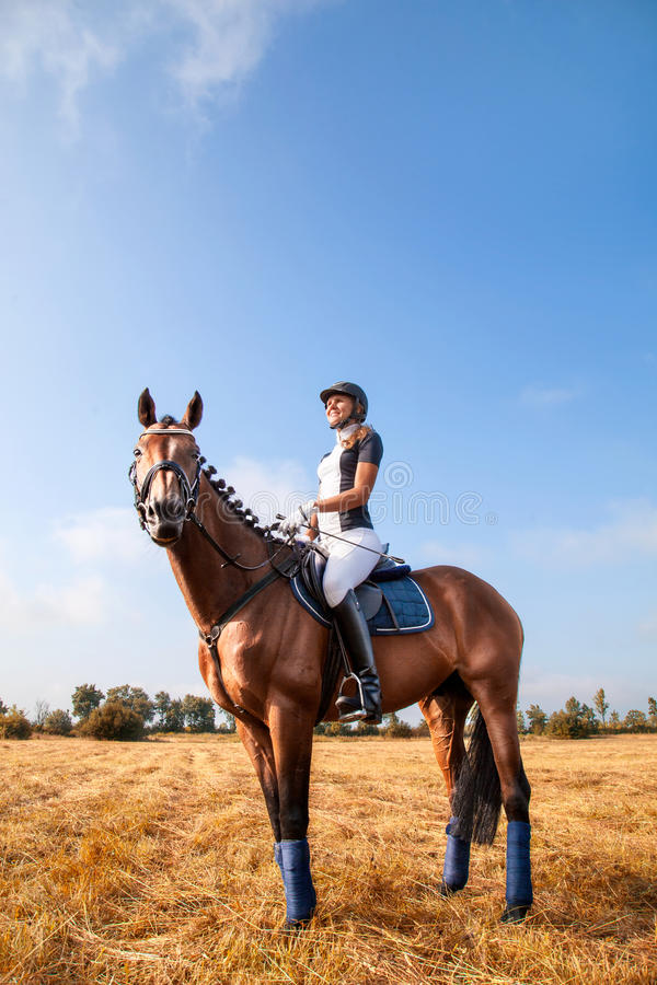 Beautiful young horsewoman sitting on a horse. Cheerful beautiful young girl jockey in uniform sitting on a horse against blue sky and yellow field,looking royalty free stock photo