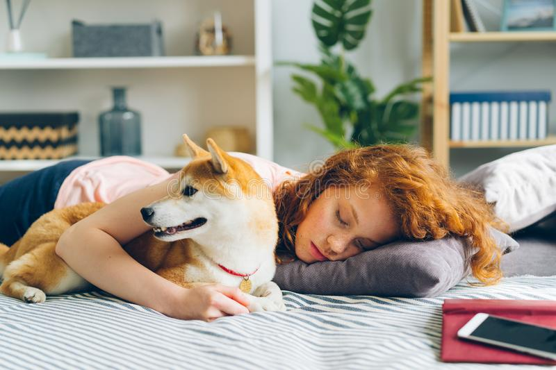 Beautiful young lady sleeping on couch at home hugging adorable puppy stock photo