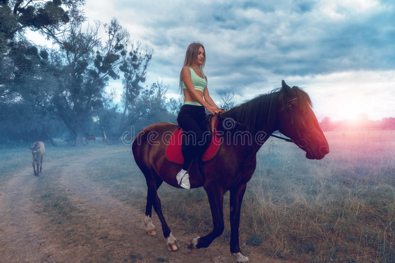 Beautiful young lady very nice with massaging Jets on horseback stock photo