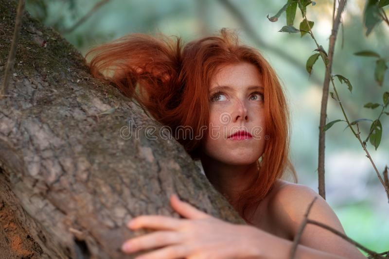 Beautiful young lovely, sexy, red-haired girl. Redhead, smiling, thoughtfully, hugs thoughtfully on a gray tree trunk royalty free stock images