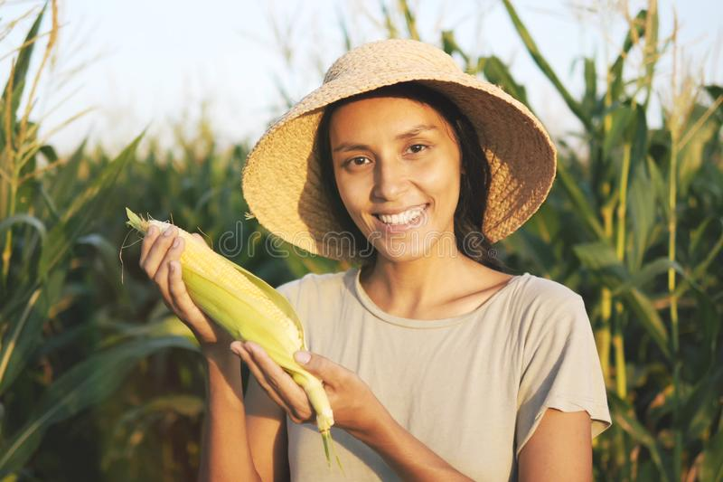 Beautiful Young Mixed Race Farmer Woman in Hat with Ripe Corn at Organic Farm Field. Woman Smiling and Showing Thumb Up at Camera royalty free stock photography