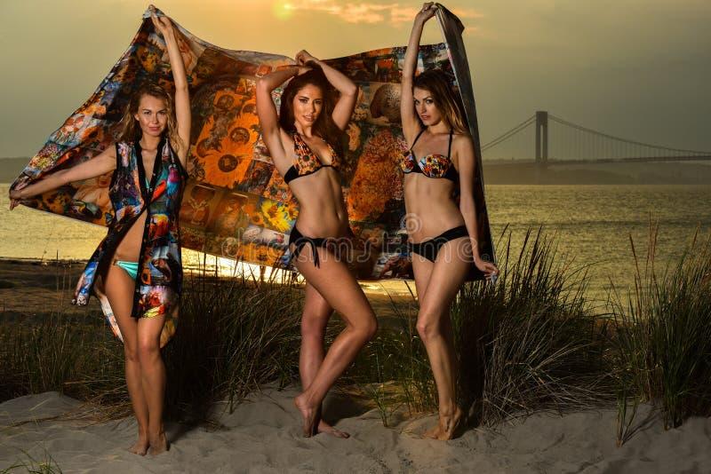 Beautiful young models wearing bikinis posing at sunset beach. royalty free stock photography