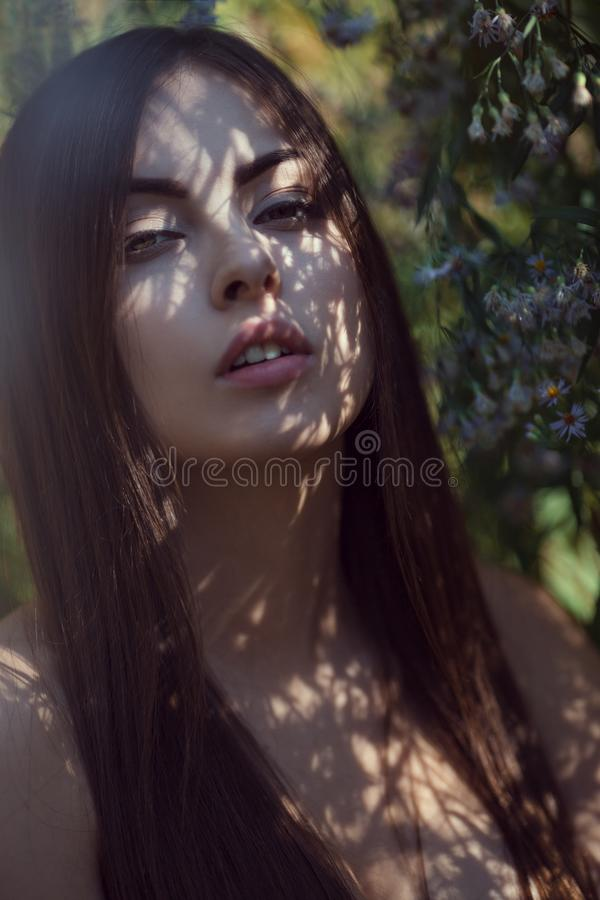 Beautiful young woman portrait in flower field stock image