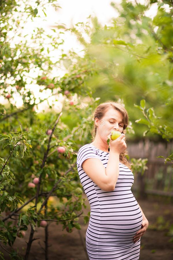Beautiful young pregnant woman standing in summer in an apple orchard and eating apples stock photography