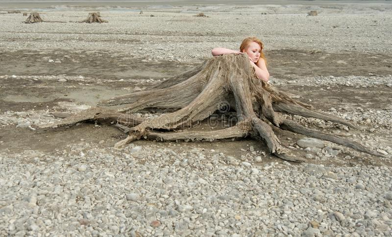 Beautiful young red-haired woman hides sensually seductively naked naked behind a parched tree stump stock photo