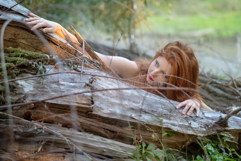 Beautiful young red-haired woman hugs friendly at a fallen gray tree trunk and strokes it sensually royalty free stock images