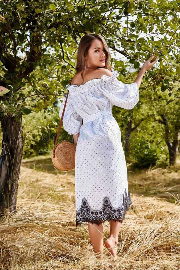 Beautiful young woman long hair bright makeup nature backgr. Ound landscape dry spike grass and apple trees garden summer model dressed in light white cotton royalty free stock image