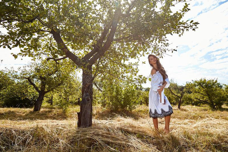 Beautiful young woman long hair bright makeup nature backgr. Ound landscape dry spike grass and apple trees garden summer model dressed in light white cotton stock photos