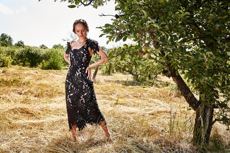 Beautiful young woman long hair bright makeup nature backgr. Ound landscape dry spike grass and trees garden summer model dressed in black lace dress accessory royalty free stock image