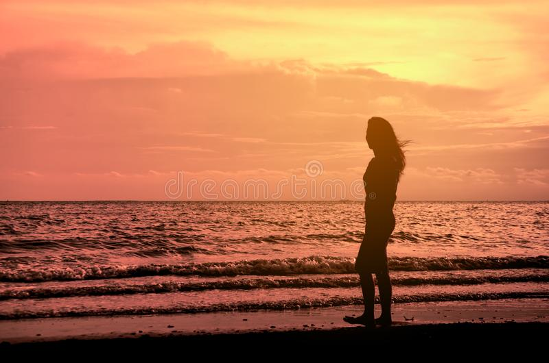 Beautiful young slim girl standing on sandy beach. At sea at the sunset stock image