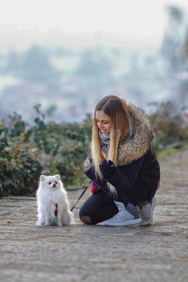 Beautiful young smiling girl strolls with small white dog. German dwarf Spitz. Pomeranian. stock image