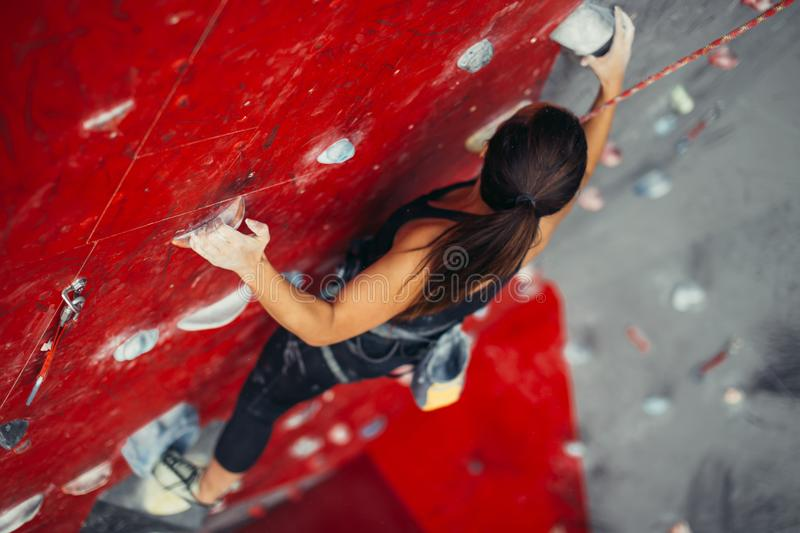 Beautiful young strong woman climbing on red artificial wall top view. royalty free stock photography