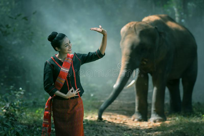 Beautiful young Thai woman northeast style is enjoy dancing and playing with elephant in the jungle. In Surin, Thailand stock images