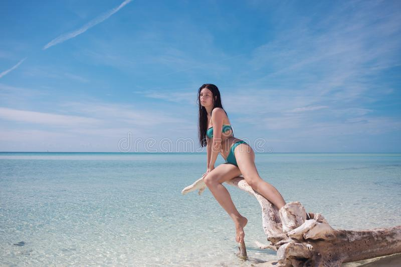 Beautiful young woman in bikini in the ocean. Young attractive brunette in blue swimsuit in blue water royalty free stock photos