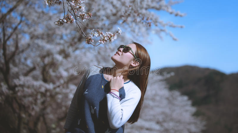Beautiful young woman in blooming cherry blossoms garden. Japan stock image