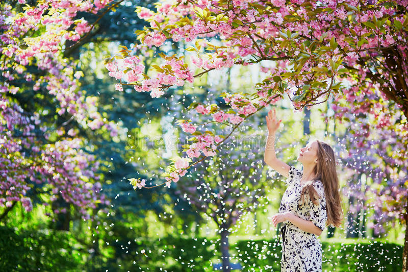 Beautiful young woman in blooming spring park. Beautiful young woman enjoying sunny day in park during cherry blossom season on a nice spring day royalty free stock image