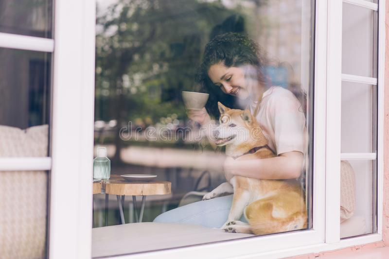 Beautiful young woman drinking tea in cafe hugging cute dog on window sill royalty free stock image