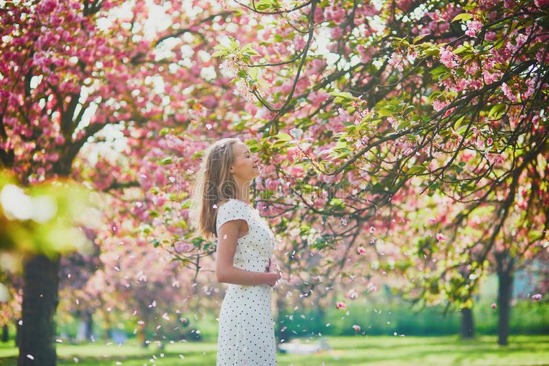Woman enjoying her walk in park during cherry blossom season stock image