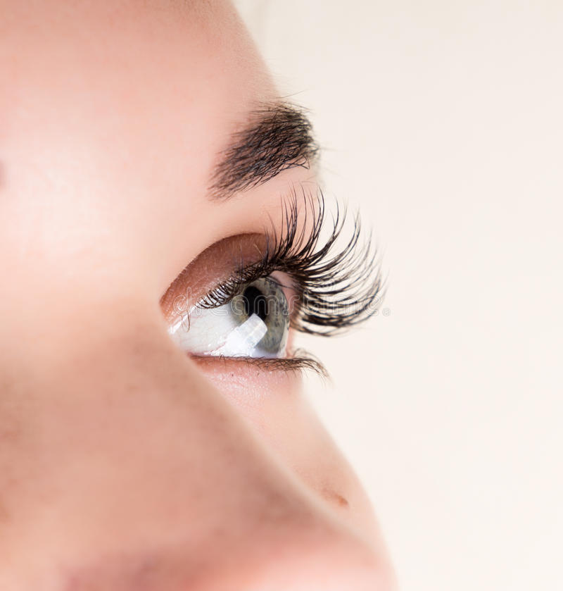 Beautiful young woman eyelash extension. Woman eye with long eyelashes. Beauty salon concept stock image