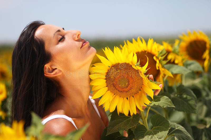 Beautiful young woman feeling the sunflower petals. Beautiful girl posing in a field of sunflowers. She feels the sunflower petals on her neck and enjoys the way royalty free stock photography