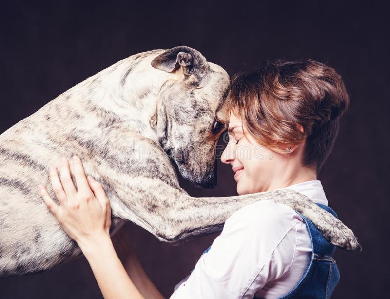 Beautiful young woman with a funny shaggy dog on a dark background. Love, care, friendship stock photo