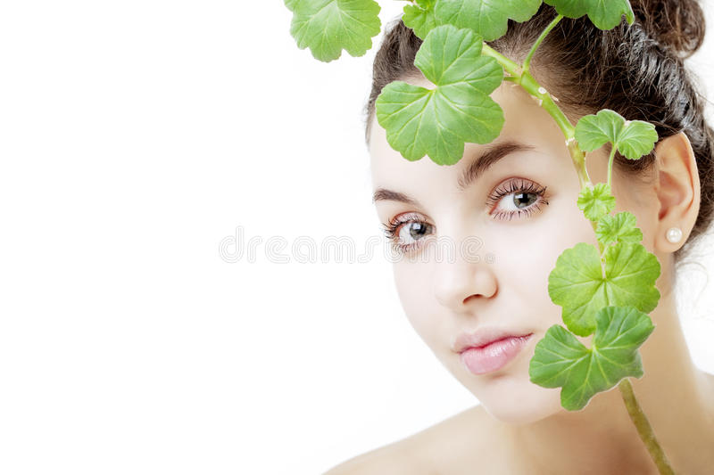 Beautiful young woman with a green plant. The image of a beautiful young woman with a green plant in the hands of royalty free stock photography