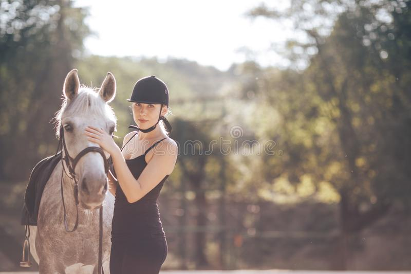 Beautiful young woman with a horse royalty free stock images