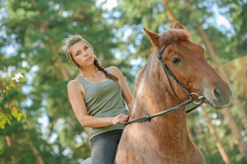 Beautiful young woman on horseback royalty free stock photos