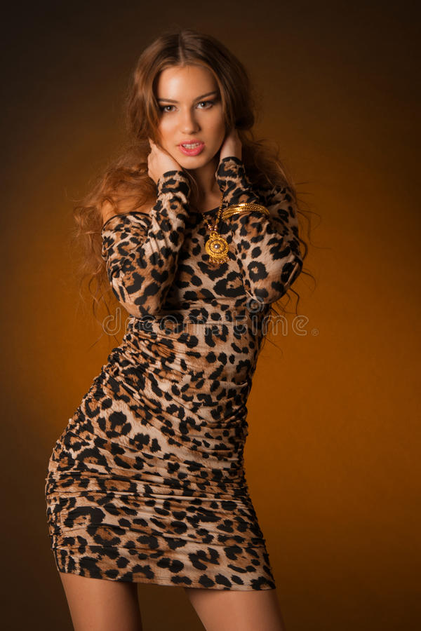 Beautiful young woman in leopard dress stock image