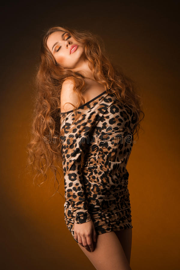 Beautiful young woman in leopard dress stock photos
