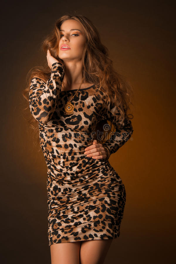 Beautiful young woman in leopard dress stock photography
