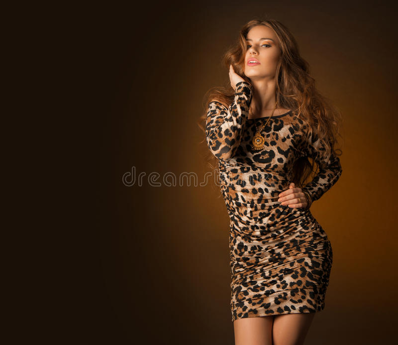 Beautiful young woman in leopard dress royalty free stock photos