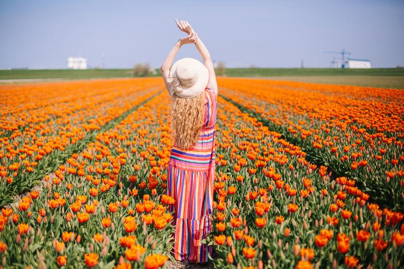 Beautiful young woman with long red hair wearing a striped dress and straw hat standing by the back on colorful tulip field stock image