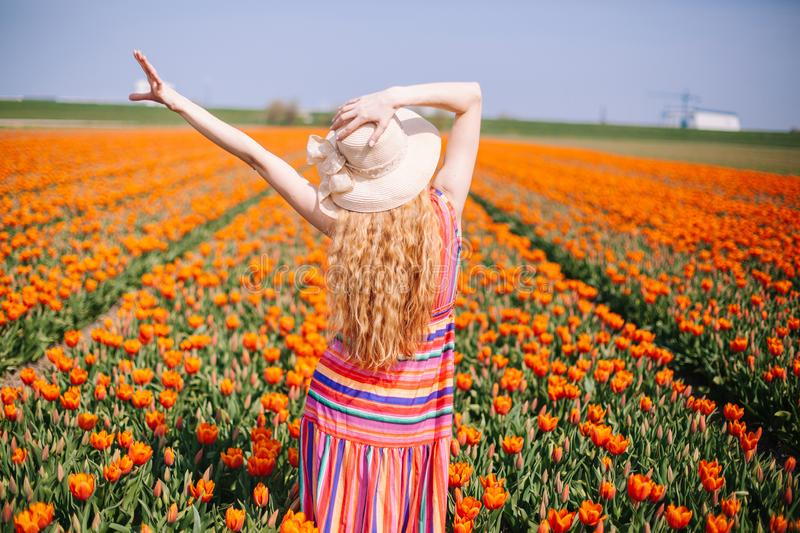 Beautiful young woman with long red hair wearing a striped dress and straw hat standing by the back on colorful tulip field stock photography