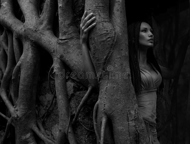 Beautiful young Woman near Banyan Tree in the rainforest in India (black – and - white photo) stock photos