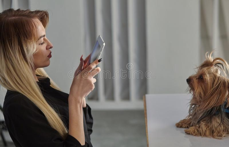 Young woman photographing her dog using a tablet stock image