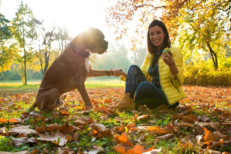 Beautiful young woman playing with her Dog in the forest royalty free stock photography