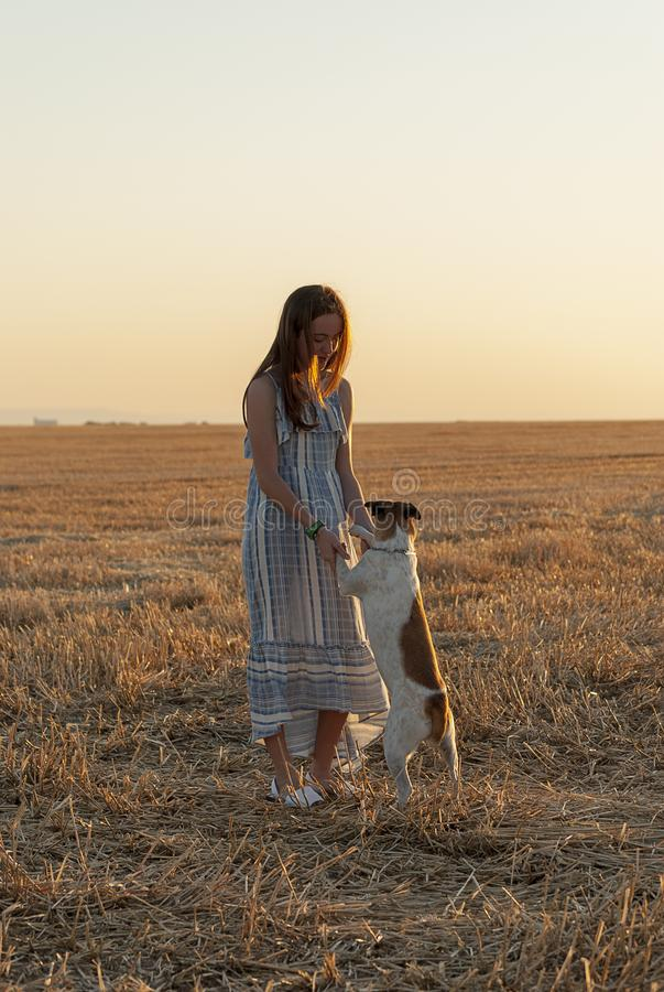 Beautiful young woman posing in a field wearing a blue and white dress, at sunset on a summer day. Red-haired. Teenager. Playing stock photos