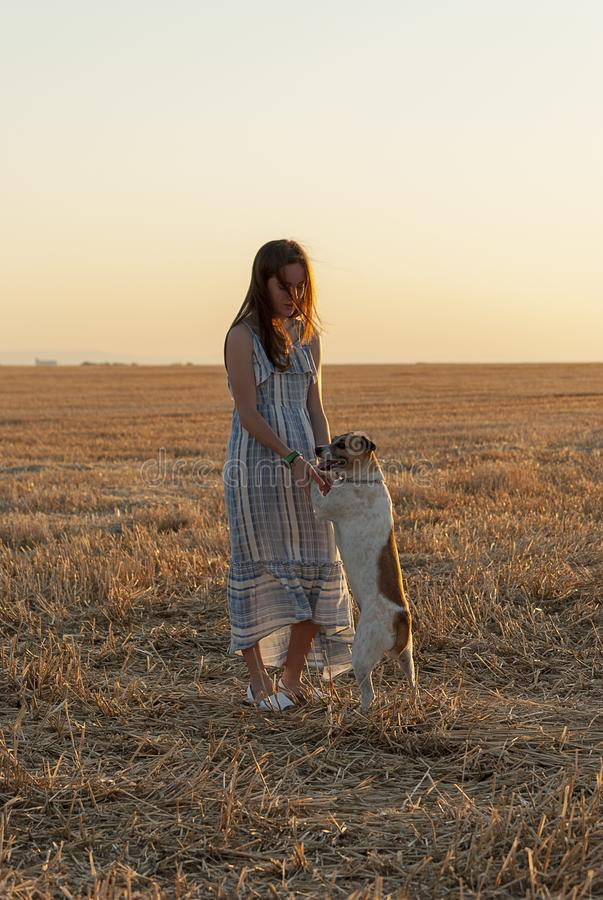 Beautiful young woman posing in a field wearing a blue and white dress, at sunset on a summer day. Red-haired. Teenager. Playing royalty free stock image