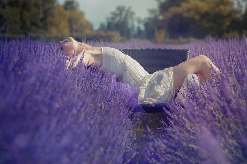 Beautiful young woman posing in a lavender field royalty free stock photos