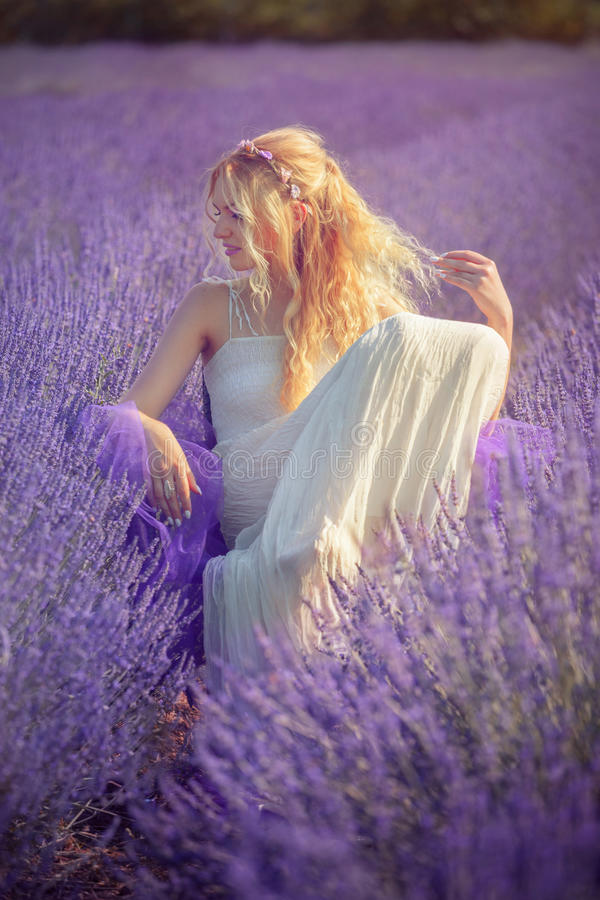 Beautiful young woman posing in a lavender field stock images