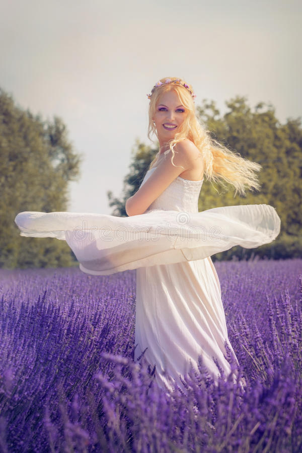 Beautiful young woman posing in a lavender field stock photos