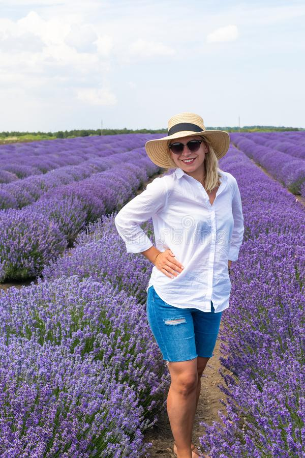 Lush lavender field royalty free stock images