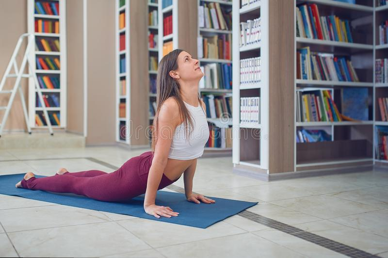 Beautiful young woman practices yoga asana upward facing dog pose in the library royalty free stock image